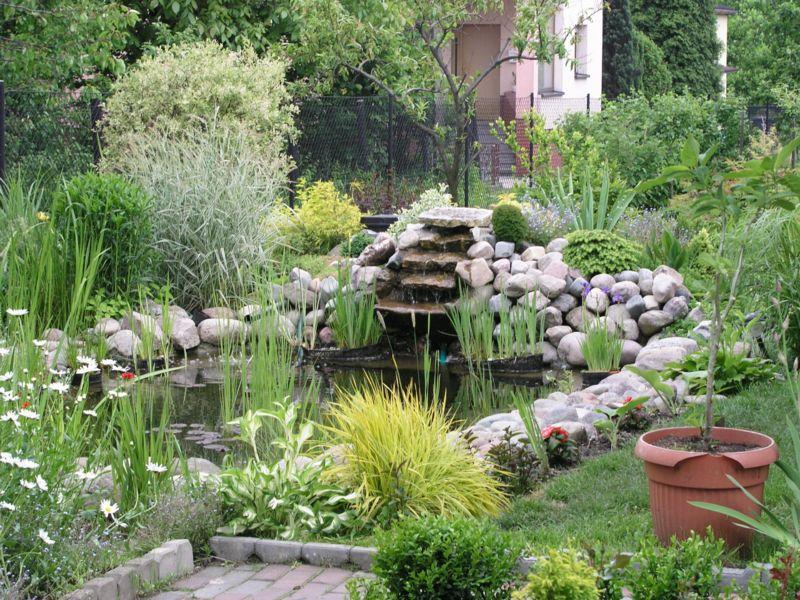 Przygotowanie oczka wodnego do zimy jak dobrze urz dzi for Koi garden rio di pusteria